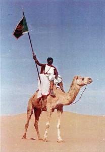 Guion de Compañia a Camello